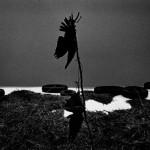 Des Rencontres Photographiques d'Arles contrastées.