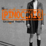 Avignon Off 2013 – Pinocchio vous recherche.